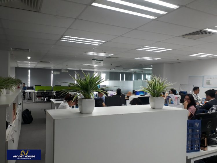 công ty nội thất an việt - thi công nội thất văn phòng
