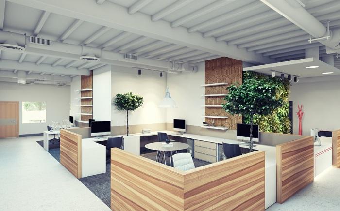 thiết kế văn phòng nhỏ, xanh