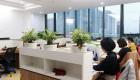 anviethouse thiết kế thi công văn phòng 12-min