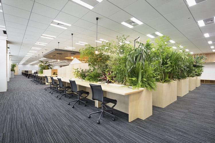 Văn phòng Amazon - Nhật Bản
