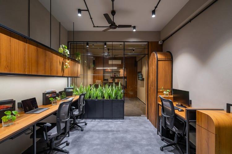 Nội thất với mảng xanh trong văn phòng